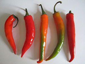 اهمية وضع شرائح من الفلفل في الطعام في مطبخنا مطبخ فتكات