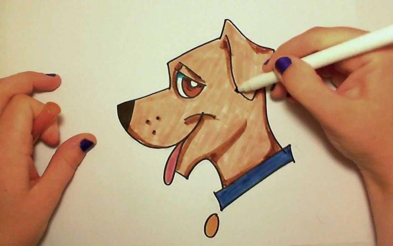 كيف أتعلم الرسم من البداية ؟