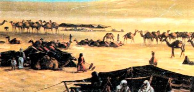 أصل العرب اليمن