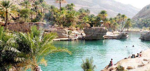 عدد ولايات محافظة الظاهرة