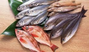 تفسير السمك في المنام