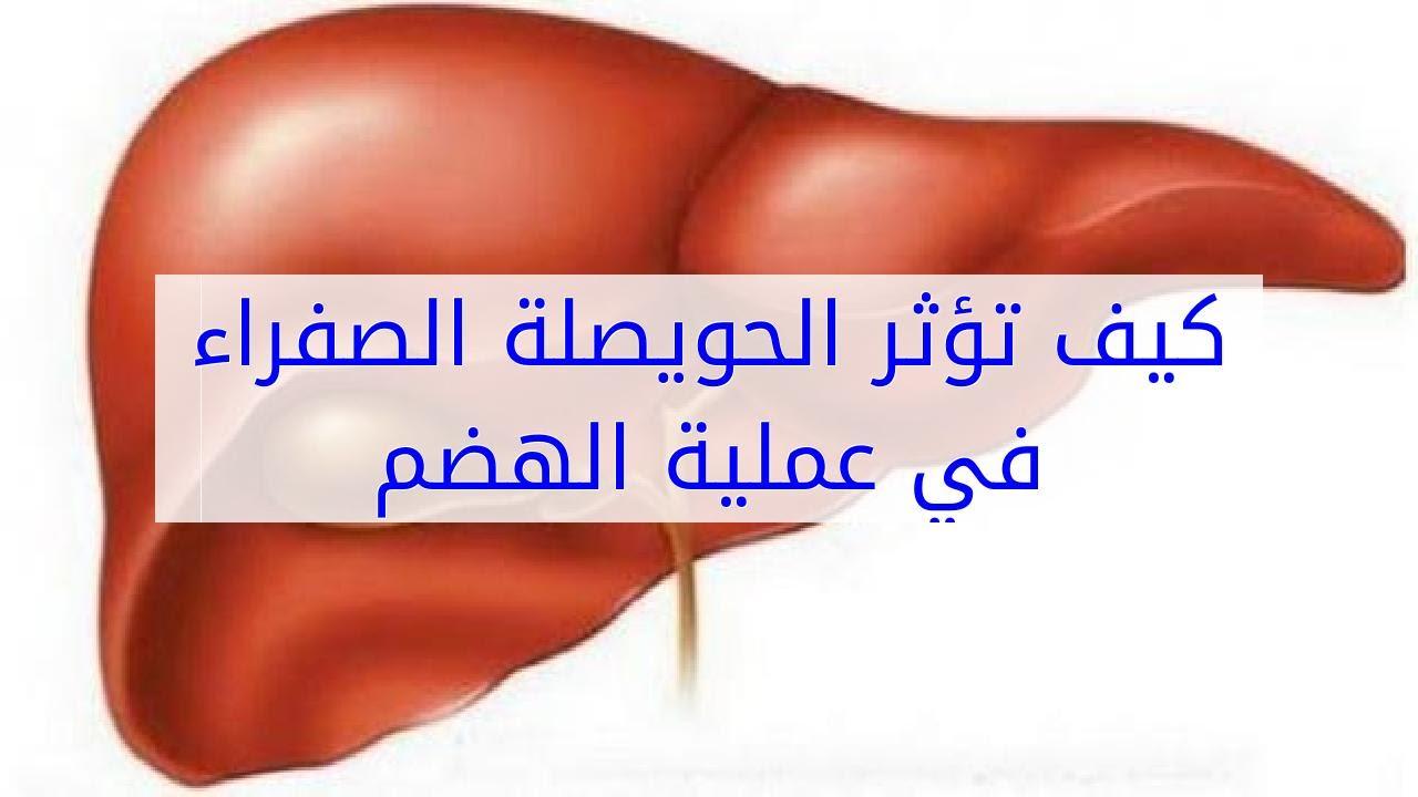 تأثير الحويصلة الصفراء على عملية الهضم