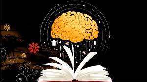 أسباب قلة الاهتمام بالقراءة والمطالعة