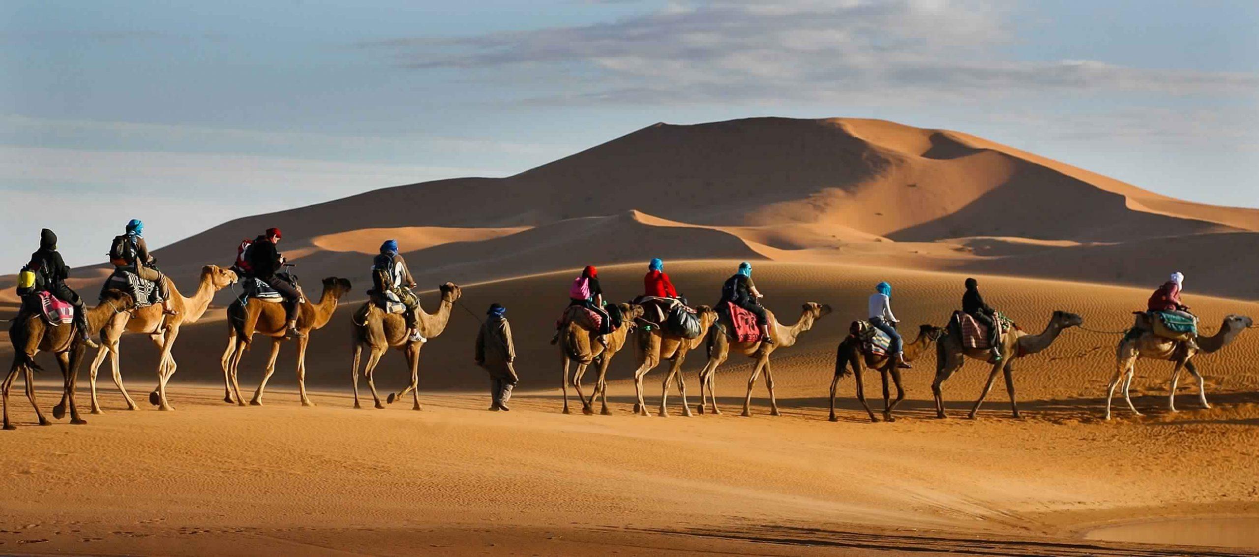 أغنى قبائل الإمارات