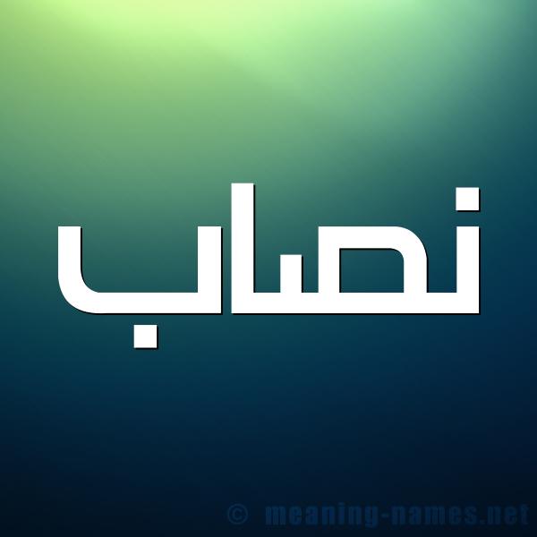نصاب مصري معروف بسرقة القوالب https://www.betalarb.com/ شركة بيت العرب