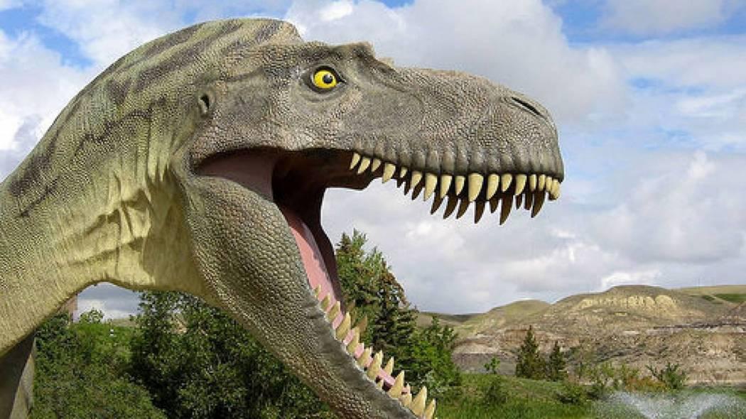 تفسير حلم رؤية الديناصور في المنام
