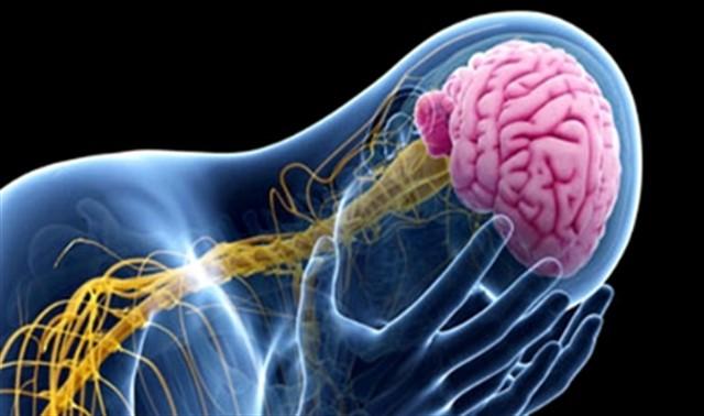 أعراض ضمور الدماغ