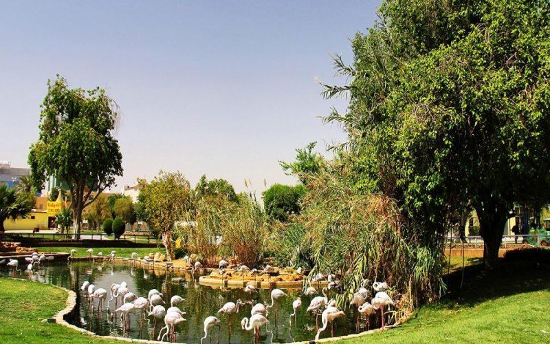 أجمل حديقة عائلية في مدينة الرياض