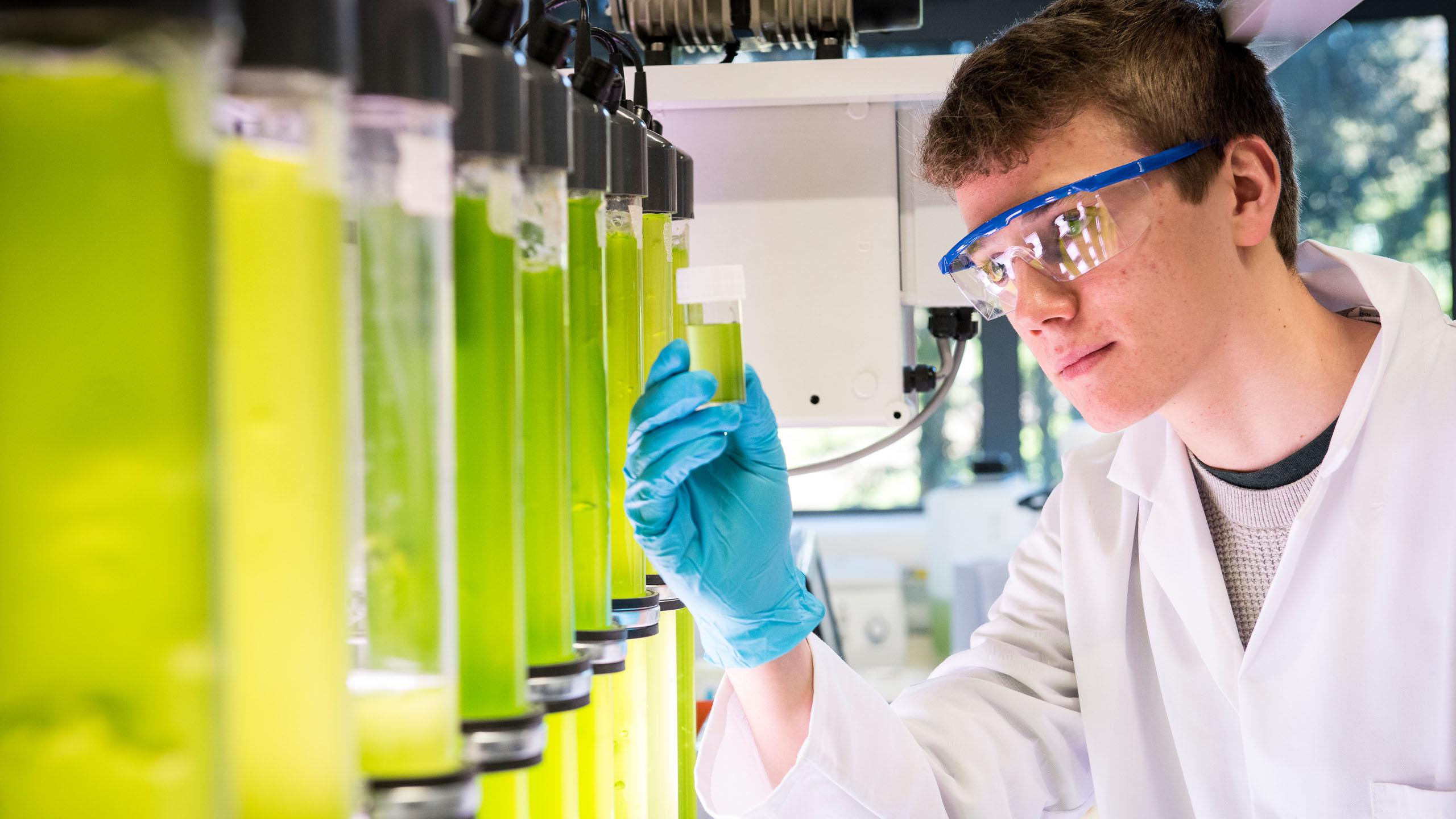 ما هي الهندسة الكيميائية؟ وما تخصصاتها؟ وما مجالاتها؟