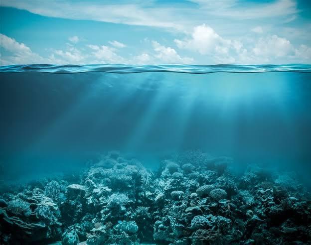 تفسير حلم رؤية المحيط في المنام