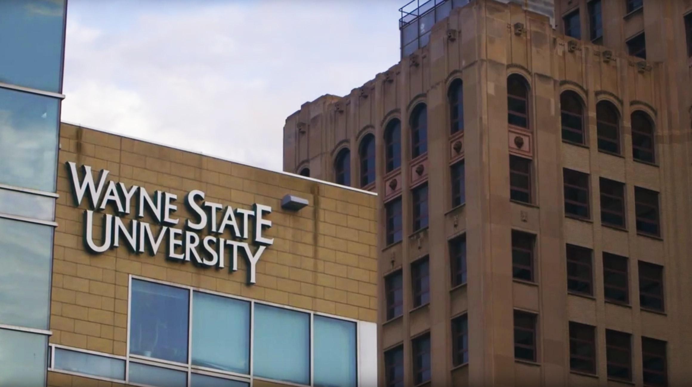 جامعة وين ستيت الامريكية واهم تخصصاتها وكيفية الالتحاق بها