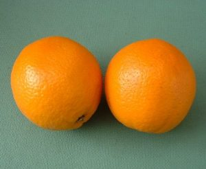 البرتقال بالصور من مطبخ فتكات