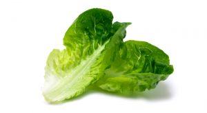 www.fatakat-a.com راس خس كبيرة lettuce-640