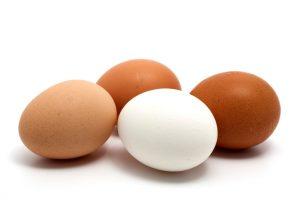اهمية البيض يدخل البيض في عناصر غذائية لبناء جسم الانسان حيث يمد عظام جسم الانسان بالكالسيوم الذي يحميه من الامراض المختلفة