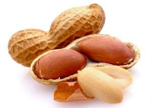 www.fatakat-a.com Peanut2