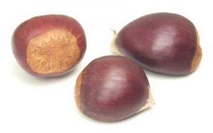 www.fatakat-a.com nuts-chestnuts